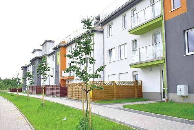 Bezpieczeństwo pożarowe dachów zielonych