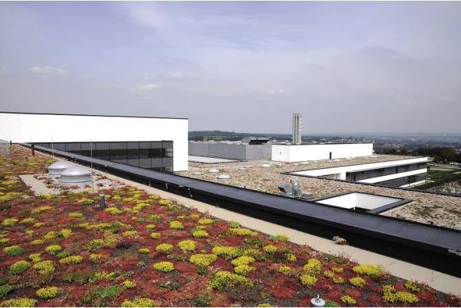 Rozwiązania konstrukcyjne budynków z dachami płaskimi
