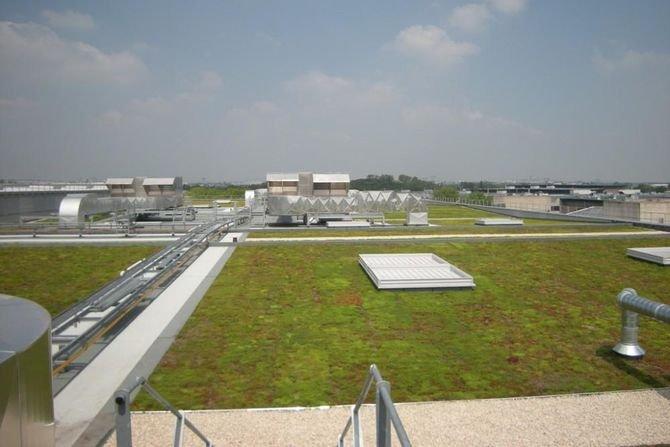 Antykorzenność izolacji wodochronnej na dachy i tarasy zielone