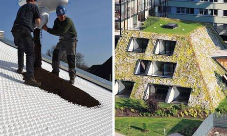 Rozwiązanie systemowe Dach skośny 15-35° typ P (mata drenażowa FKD58 SD)