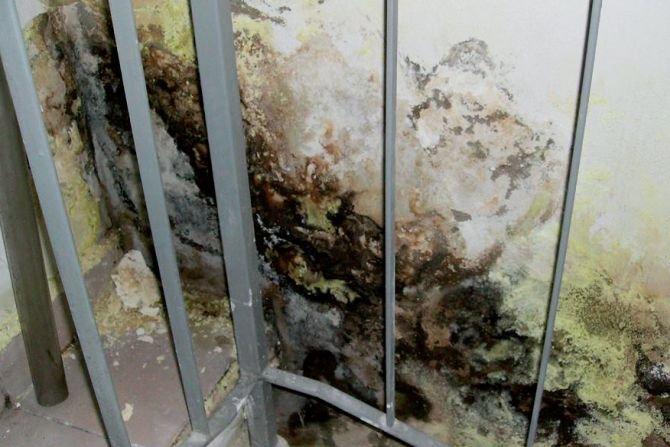 Termoizolacja ścian budynków zabytkowych – wybrane problemy