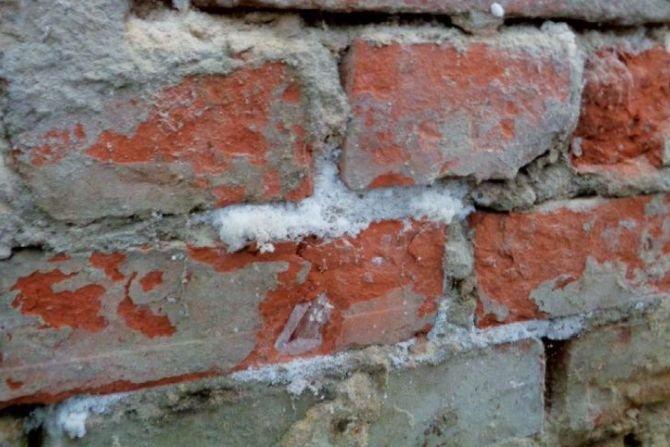 Zasolenie budynków i sposoby jego określania na potrzeby diagnostyki budowli