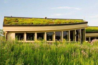 Lembit zielony dach - układ bez termoizolacji