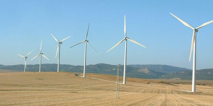 Energetyka wiatrowa – co sądzą o niej Polacy?