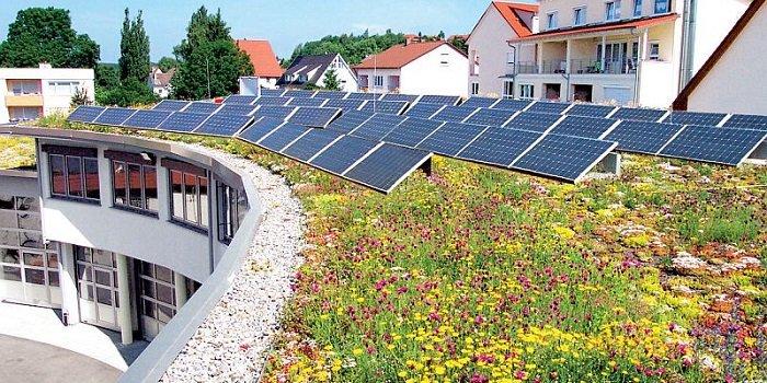 Zielony dach solarny i retencyjny Optigruen – korzyści ekologiczno-ekonomiczne