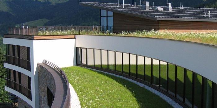 Wytyczne do projektowania, wykonywania i utrzymywania dachów zielonych
