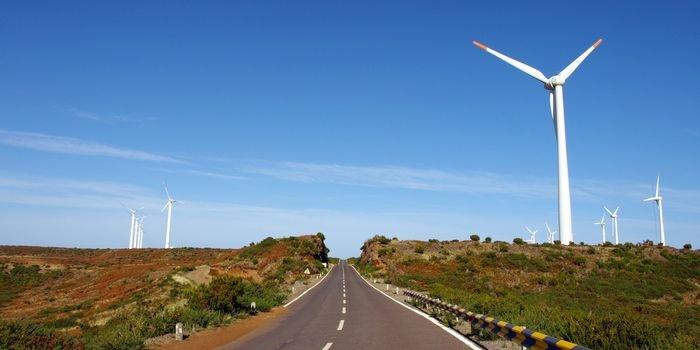 Konferencja PSEW2021: dobry klimat do rozwoju energetyki wiatrowej