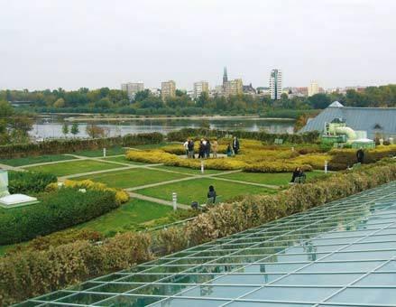 Dach zielony z roślinnością piętra niskiego oraz regularnym podziałem eksponującym panoramę stolicy, Warszawa – Biblioteka Uniwersytecka Autorzy