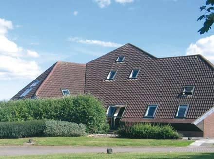 Współcześnie spotyka się również budynki doświetlane w całości wyłącznie oknami dachowymi. K. Patoka