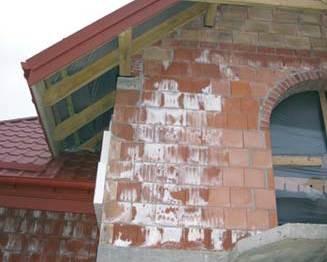 Wykwity na murze z cegły Archiwum autorów