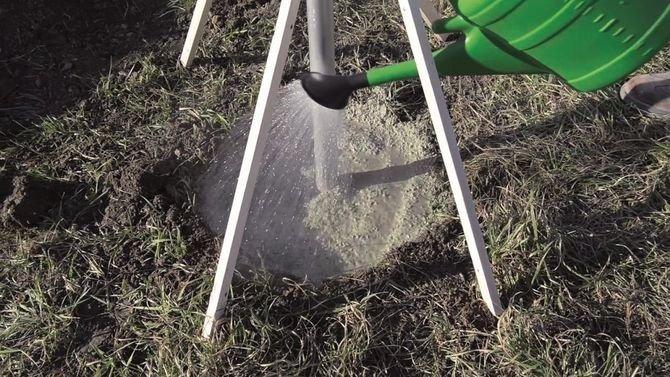 Powoli polewać wodą przy użyciu np. konewki ogrodowej