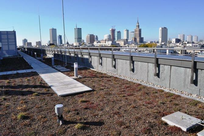 Dachy zielone - wybrane zagadnienia związane z projektowaniem Soprema