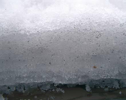 Fot. 15. Powłoka śniegu o grubości 23 cm zalegająca na dachu ma określoną strukturę. Na dole – tam, gdzie śnieg stykał się długo z pokryciem – zamienił się on w lód. Powodem jest uciekające przez dach ciepło. Im jest go więcej, tym warstwa lodu jest grub.