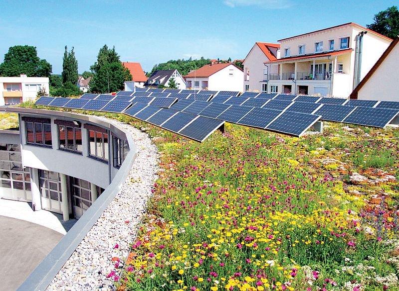 Zielony dach solarny – dach z roślinnością, na którym zainstalowano panele fotowoltaiczne; fot.: Optigruen International AG