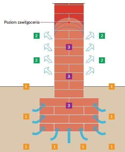 RYS. 1. Dynamika podciągania kapilarnego wilgoci w murze oraz schematyczne przedstawienie trzech czynników determinujących maksymalną wysokość zawilgocenia. Oznaczenia: 1 – zaopatrzenie w wodę, 2 – parowanie, 3 – właściwości materiałów oraz struktura muru; rys.: [4]