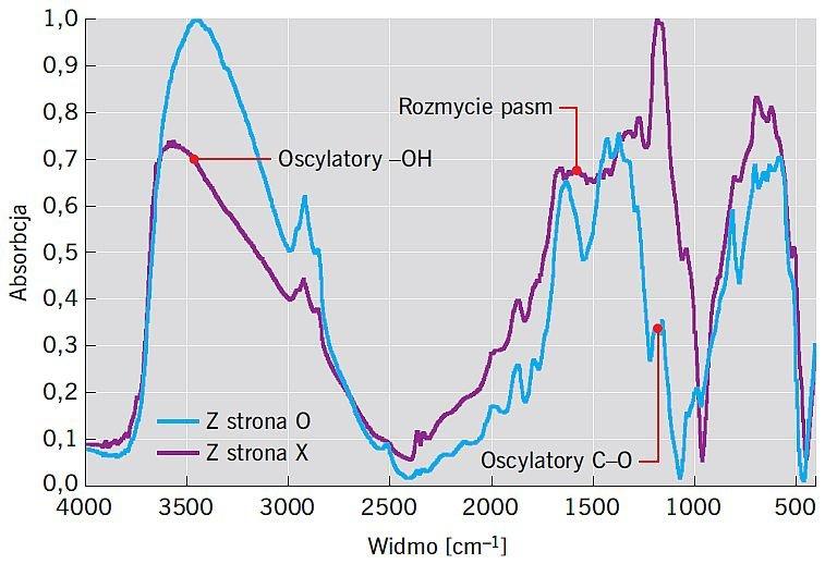 RYS. 4. Zestawienie widm dyfuzyjnych dla powierzchni oznaczonej X oraz O; rys.: [10]