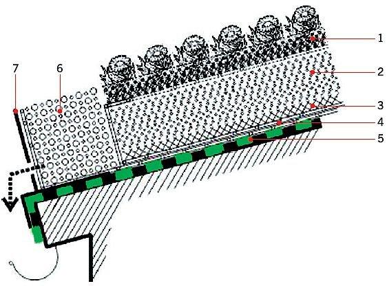RYS. 3.Systemy odwodnieniowe muszą zbierać wodę zarówno z wierzchu połaci dachowej, jak i z warstwy drenażowej. 1 - warstwa roślinna, 2 - warstwa wegetacyjno-magazynująca, 3 - warstwa antyerozyjna, 4 - warstwa separacyjna, 5 - warstwa hydroizolacji antykorzennej, 6 - żwir płukany 16-32 mm, 7 - profil aluminiowy; rys.: [4]