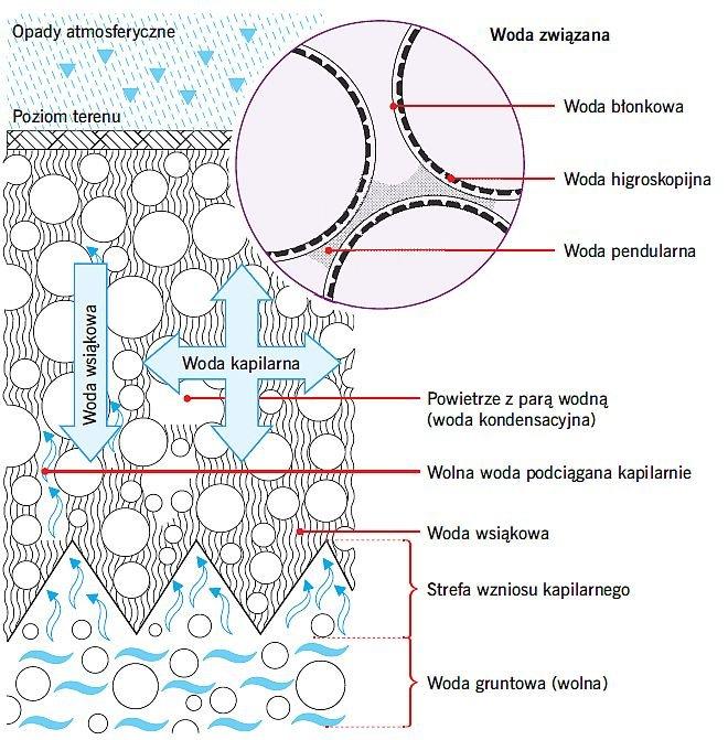 RYS. 1. Główne rodzaje wody w gruncie; rys.: [5, 9]