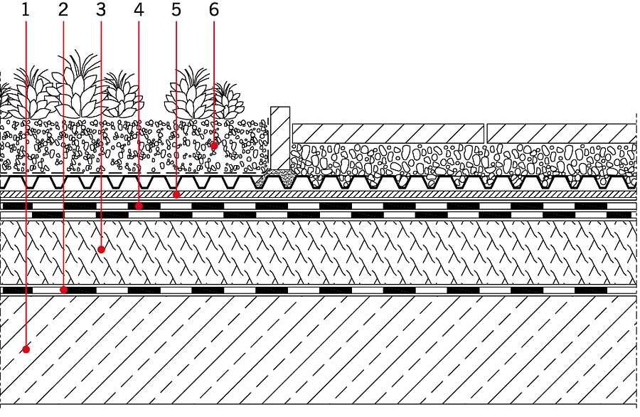 RYS. 2 Dach zielony w układzie odwróconym. Objaśnienia: 1 - płyta konstrukcyjna, 2 - paroizolacja, 3 - termoizolacja (EPS, XPS), 4 -hydroizolacja, 5 - warstwa drenująca, 6 - warstwa wegetacyjna; rys. Bauder