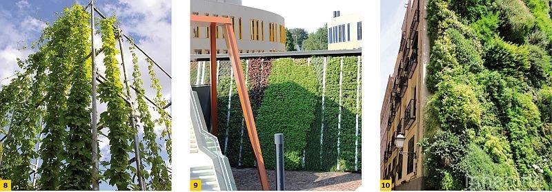 FOT. 8-10. Zróżnicowane rozwiązania fasad zielonych; fot. [13], [15]