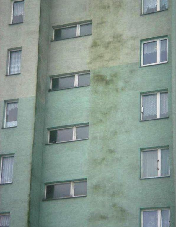 Fot. 1. Elewacja ocieplonego budynku dotknięta