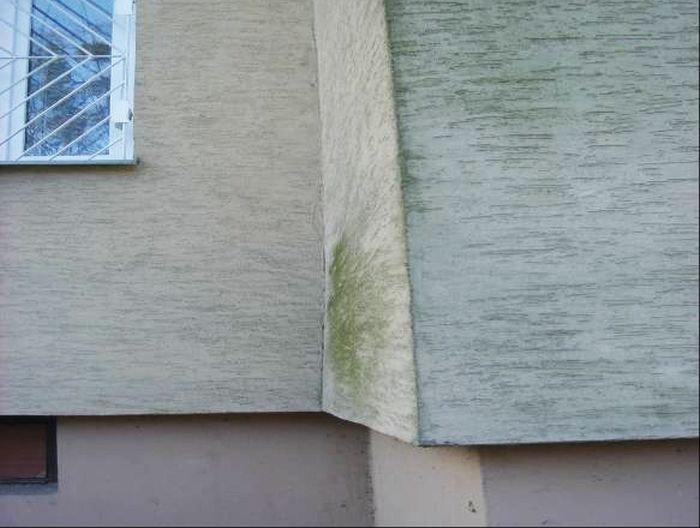 Fot. 19. Zielony osad w nierównościach powierzchni ocieplenia; fot.: archiwum autora