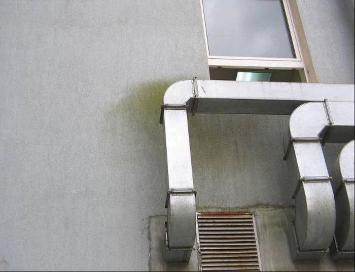Fot. 22. Osad z glonów, spowodowany zamontowaniem nieprawidłowo obudowanej instalacji odprowadzającej parę wodną; fot.: archiwum autora