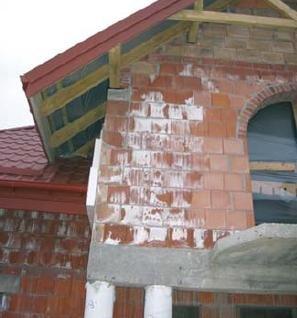 Fot. 2. Wykwity na murze z cegły