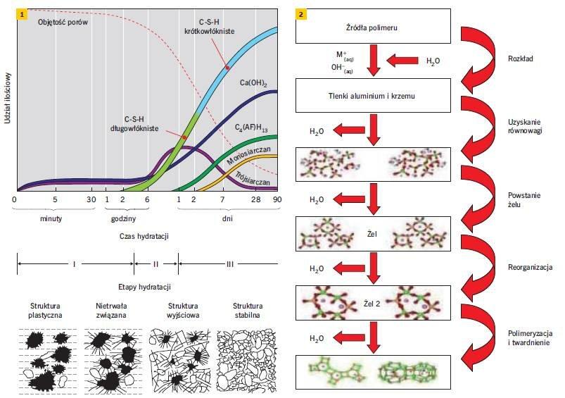 Rys. 1–2. Zestawienie faz hydratacji cementu portlandzkiego (1) [10] oraz polimeryzacji (2) [11]