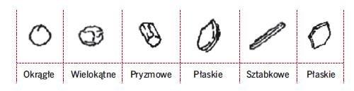 Rys. 6. Formy budowy ziaren