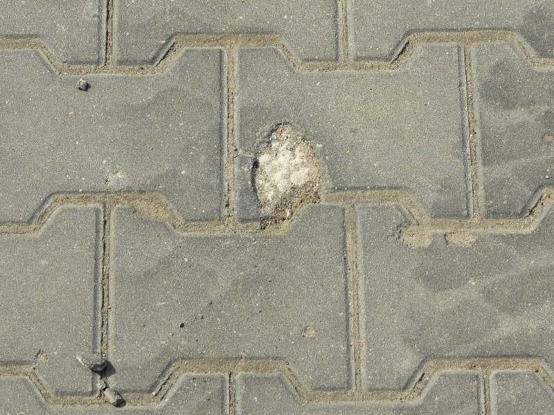 FOT. 1. Destrukcja mrozowa betonowej kostki brukowej; fot.: Ł. Mrozik
