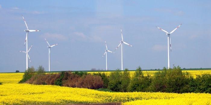 Powołanie pełnomocnika do spraw międzynarodowej współpracy klimatycznej, fot. www.pixabay.com