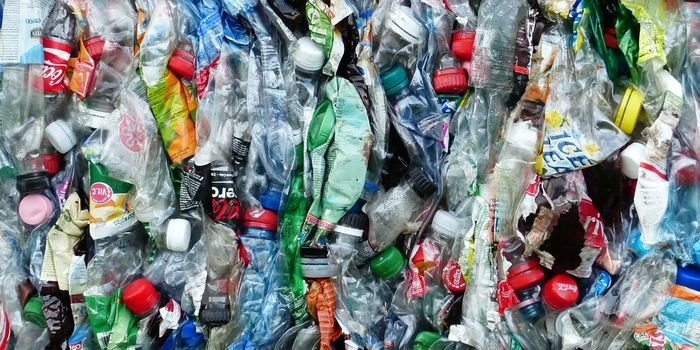 Ekolodzy o odpowiedzialności producentów opakowań za środowisko, www.pixabay.com